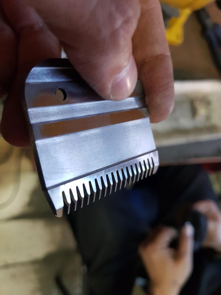 Заточка ножей: нож от машинки для стрижки собак